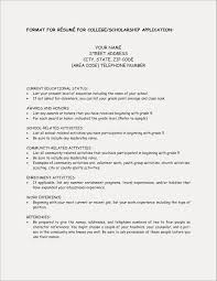 Sample Resume For High School Students Applying Scholarships College Scholarship Examples