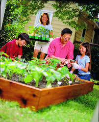 Continue the benefits of ve able gardening into the fall