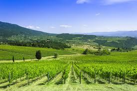 Tuscany Italy Landscape Natures Photo