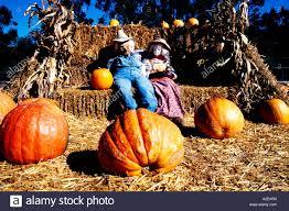 Pumpkin Fest Half Moon Bay california san mateo coast half moon bay october halloween pumpkin