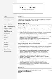 Veterinary Technician Resume Example