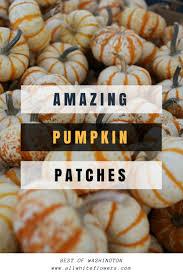 Clayton County Pumpkin Patch by Best 25 Spooner Farms Ideas On Pinterest Corn Maze Harvest