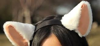 how to make cat ears neuro fashion wiggling cat ears with brainwaves science