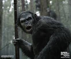 Dawn Of The Planet Of The Apes Review - MOARGeek Closer Look Dawn Of The Planet Apes Series 1 Action 2014 Dawn Of The Planet Apes Behindthescenes Video Collider 104 Best Images On Pinterest The One Last Chance For Peace A Review Concept Art 3d Bluray Review High Def Digest Trailer 2 Tims Film Amazoncom Gary Oldman