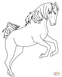 Click The Rearing Arabian Horse Coloring Pages