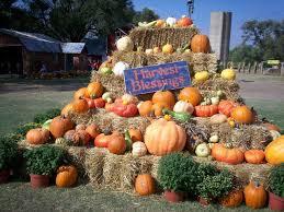 Hillcrest Farms Pumpkin Patch by 38 Best Pumpkin Patch Fundraiser Images On Pinterest At Home