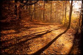 Light and shadow by mjagiellicz on DeviantArt