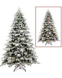 Snowy Dunhill Christmas Trees by Check Out These Bargains On National Tree Company 7 5 U0027 Snowy