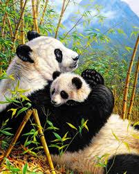 GZ701 4050 Famous Panda Animal Art Diamond Painting By Numbers Decoration Room