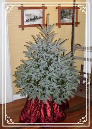 Silver Tip Christmas Tree Bay Area by Forever Green Christmas Tree Farm