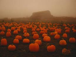 Dollingers Pumpkin Farm Minooka Il by 76 Dollingers Pumpkin Farm Minooka Il Illinois Week For The