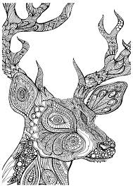 Deed Head Animals Coloring Pages For Adults Justcolor Deer Drawn In Zentangle Style From The Gallery