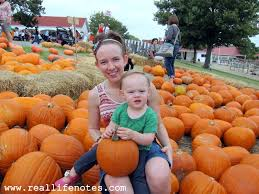 Real Pumpkin Patch Dfw by Big Orange Pumpkin Farm In Richardson Tx