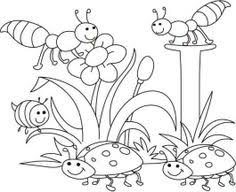 Gecko Insect Coloring Page 15 Image Detail For
