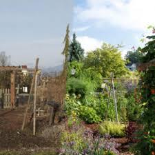 Backyard Raised Vegetable Garden Design