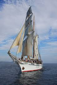 Hms Bounty Sinking Report by 5519 Best Velamen Images On Pinterest Tall Ships Sailing Ships