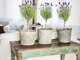 Shabby Chic Dining Room by Home Decor Amazing Shabby Chic Dining Room About Remodel Home