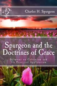 Spurgeon And The Doctrines Of Grace Sermons On Calvinism Its Practical Application
