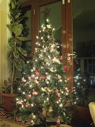 Christmas Tree Permit Colorado Springs 2014 by December 2013 The Pocahontas Files