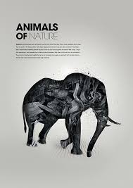171 Best Art Design Poster Images On Pinterest