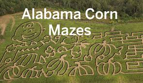 Pumpkin Patch Auburn Al by 14 Alabama Corn Mazes To Get Lost In This Fall Al Com
