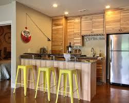 Basement Kitchen Design Ideas Houzz Best Collection