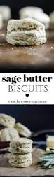 Pumpkin Gnocchi Recipe With Sage Butter by Best 25 Sage Butter Ideas Only On Pinterest Sage Butter Sauce