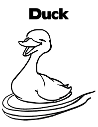 Cartoon Duck Pictures For Kids 1598139