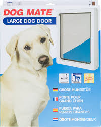 Dogs That Dont Shed Large by Dogs That Stay Small Forever And Don U0027t Shed Dog Pet Photos