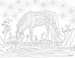 Adult Horse Coloring Books