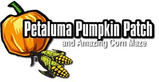 Pumpkin Patches Near Chico California by Corn Maze Night Maze Pumpkin Patch Petaluma Pumpkin Patch 707