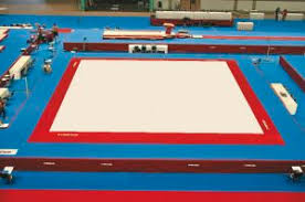 Exercise Floor by Floor Gymnastics Female Gymnast Performs On Stock Photo And
