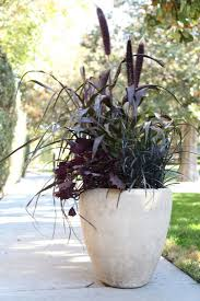 Patio Plant Stand Uk by Best 25 Patio Planters Ideas On Pinterest Planters Decorative