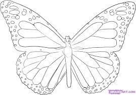 Monarch Butterfly Chrysalis Coloring Book Page How To Draw A Step By Butterflies Animals FREE