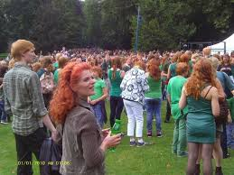 Celebrate Highwood North Shore Taco Fest U0026 Highwood Days by 36 Best Life Of Gingers Images On Pinterest Redheads Hilarious