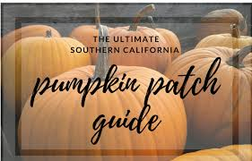 Apple Hill Pumpkin Patches Ca by The Ultimate Southern California Pumpkin Patch Guide Buy Invest