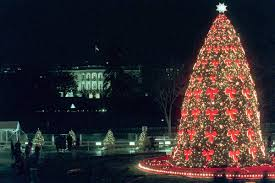Christmas Tree Disposal Nyc 2016 by National Christmas Tree Shines Through The Years Nbc New York