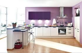 idee mur cuisine idee couleur peinture cuisine quelle couleur avec une cuisine