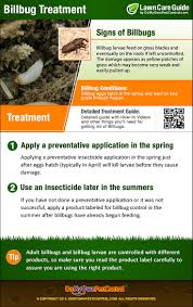 How To Get Rid Of Bluegrass Billbugs - Treatment & Control How To Kill Fleas And Ticks All Naturally Youtube Keep Away From Your Pet Fixcom Get Rid Of Get Amazoncom Dr Greenpet Natural Flea Tick Prevention Tkicide The Art Getting Ticks In Lawns Teresting Rid Bugs Back Yard Ways Avoid Or Deer Best 25 Mosquito Control Ideas On Pinterest Homemade Mosquito Dogs Fast Way Mole Crickets Treatment Control Guide