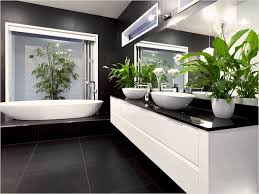 Good Plants For Bathroom by Plants For Bathrooms Plants For Bathroom Bathroom Best Plants