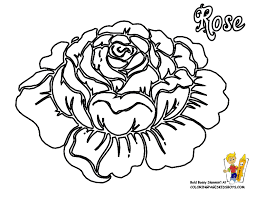 Dazzling Design Ideas Rose Flower Coloring Pages Free Flowers Of At YesColoring