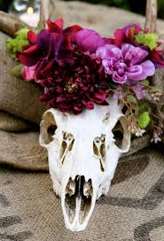 Decorated Cow Skulls Australia by 17 Best Deer And Cow Skulls For Wedding Images On Pinterest