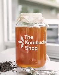 Kombucha Before Bed by Amazon Com Kombucha Brewing Kit With Organic Kombucha Scoby
