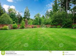 Green Large Fenced Backyard With Trees. Royalty Free Stock Images ... Playful Dog Running Away From Ball White Labradoodle Putting Greens Golf Just Like Grass Tour Backyard Green Cost Synlawn Itallations Reviews Testimonials Our Diy Kids Theater Emily A Clark Unique Architecturenice Little Bit Funky How To Make A Backyard Putting Green Wood Fence On Colorful House Stock Vector 606411272 Concrete Ideas Hgtvs Decorating Design Blog Hgtv Puttinggreenscom One Story Siding With Lawn View From The