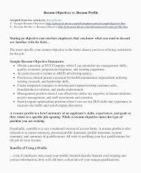 Project Manager Resume Skills New Software Engineering 25 It Program