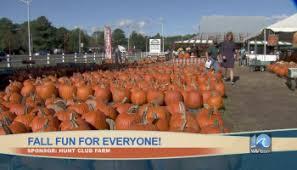 Pumpkin Patch Chesapeake Va by Pumpkin Patches In Hampton Roads Wavy Tv