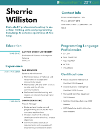 It Resume Format Sample Example