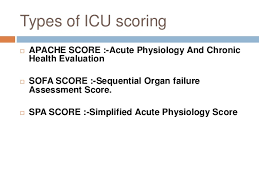 sofa score calculator icu 100 images application of a