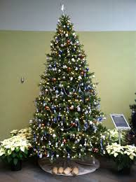 Meijer Artificial Christmas Trees by Christmas Tree America Christmas Lights Decoration