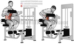 Captains Chair Workout Machine by Rectus Abdominis Archives Weight Training Guide